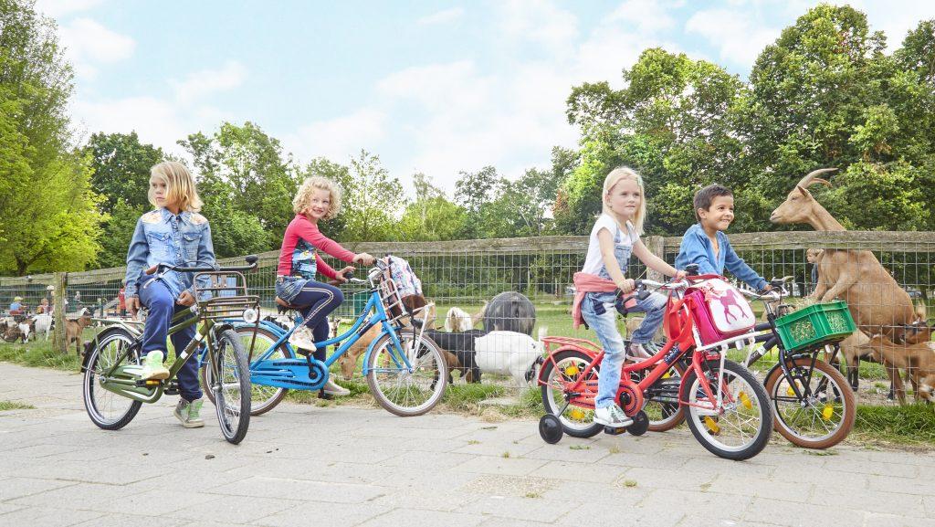 Kinderfietsen Alpina Evers Janssen Tweewielers Nijmegen
